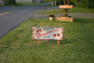 StrawberrySign